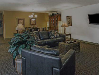 large suite with fireplace, couches and kitchenette